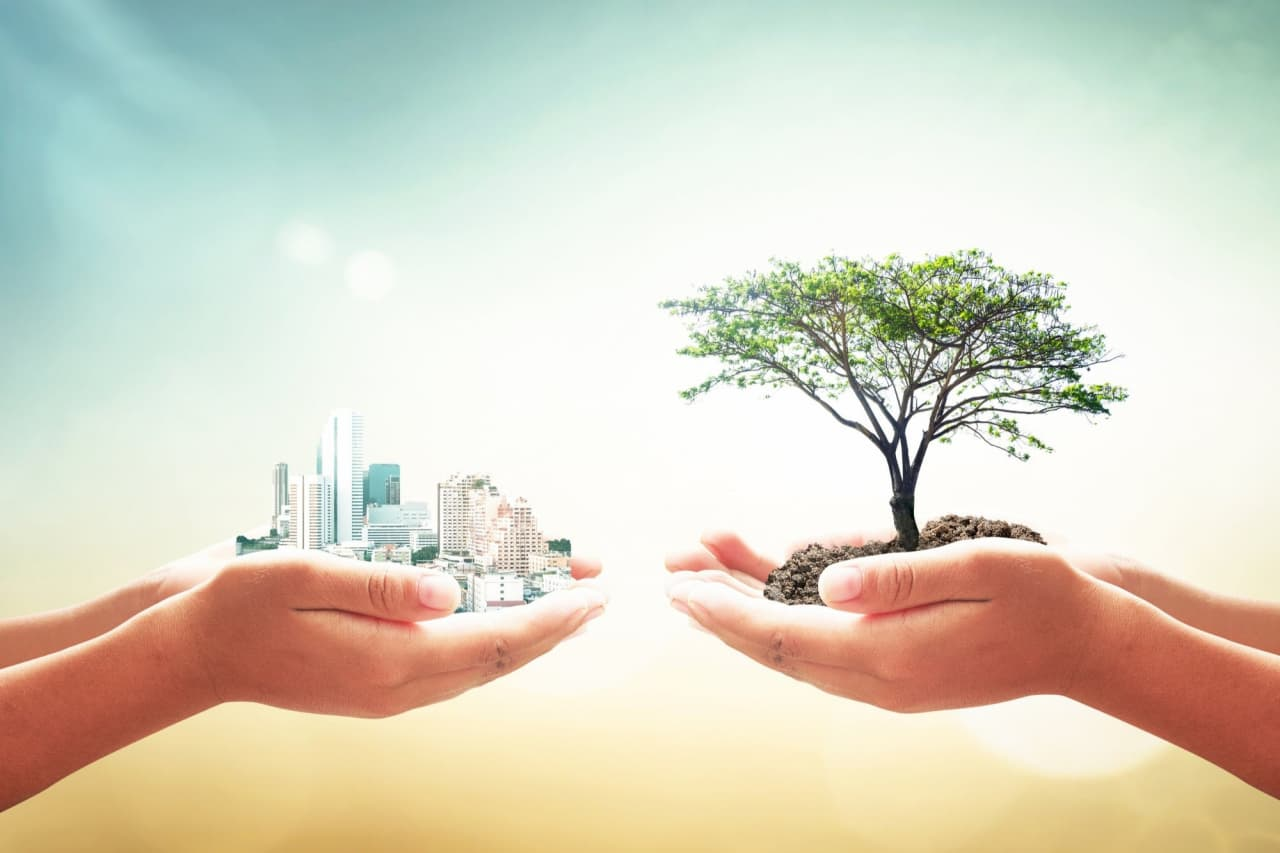 5 Ways Your Business Can Benefit From Adhering to Sustainable Development Principles